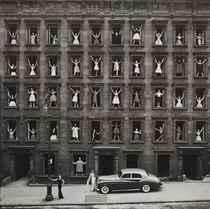 Girls in Windows, New York City, 1960