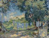 A light breeze, Biôt, Provence