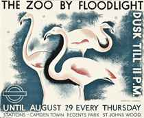 THE ZOO BY FLOODLIGHT