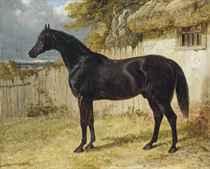 John Frederick Herring, Snr. (1795-1865)