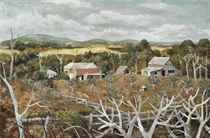 Orchard, Boronia