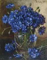 A bouquet of cornflowers
