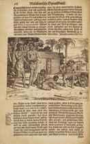 BALDAEUS, Philippus (1632-1672) Wahrhaftige Ausfhrliche Besc