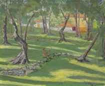 The Ancient Olive Grove at La Dragonnière, Cap Martin