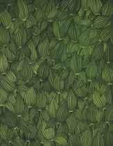 Leaves - Arrow Weed