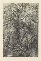 Branchages
