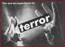 Untitled (You are an experiment in terror)