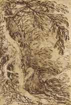 Homme priant debout dans le creux d'un tronc d'arbre