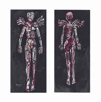 The Flayed Angels