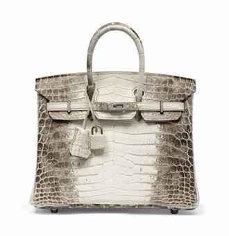 hermes bag sale - SAC BIRKIN HIMALAYA 25 EN CROCODILE NILOTICUS BLANC MAT, GARNITURE ...