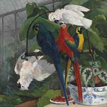 Parrots in a tropical glasshouse