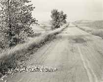 Nebraska State Highway 2, Box Butte County, Nebraska, 1978