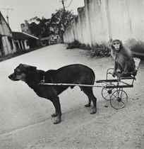 A Dog Pulling a Monkey, National Circus of Vietnam, Lenin Park, Hanoi, Vietnam, 1994
