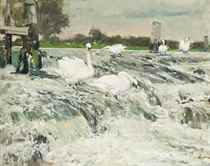 Fishers on the weir