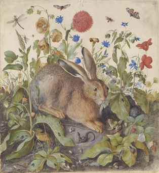 A hare among plants