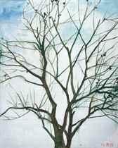 Tree in Winter 2