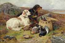 English and gordon setters with the day's bag