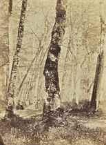 CONSTANT ALEXANDRE FAMIN (1827-1888)
