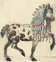 A skewbald pony with red ribbons