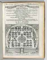 AUSTEN, Ralph (d 1676) A Treatise of Fruit-Trees, Shewing th