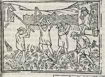 CRESCENTIUS, Petrus (ca 1233-ca 1320) De agricultura vulgare