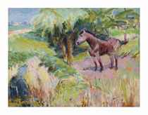 A horse in a field (recto); Flax field (verso)