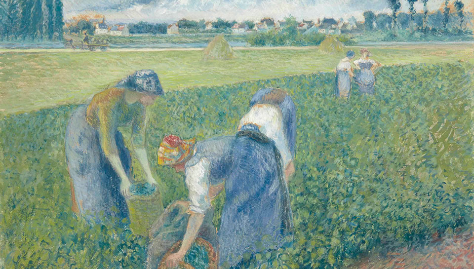Camille Pissarro: Reaping the