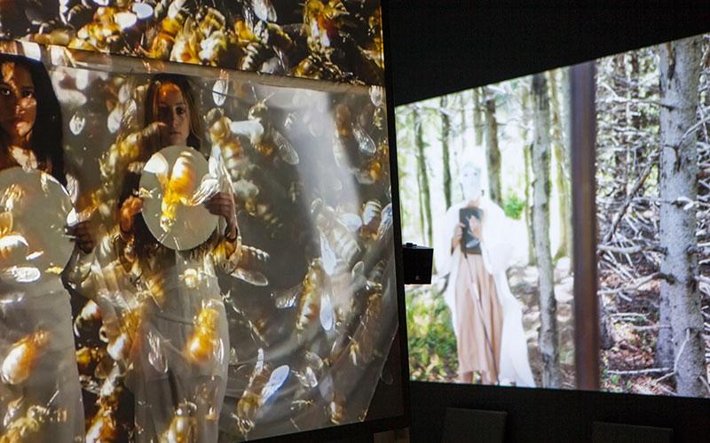 Venice Biennale Blog