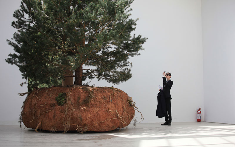Venice Biennale 10 must-see National Pavilions