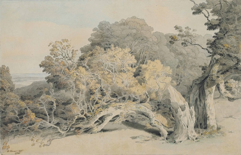 Francis Towne (Middlesex 1739-1816 London), A Study of a Tree Blown Down in Peamore Park, Near Exeter. Pencil, pen and grey ink and watercolour, on a double sketchbook page, laid down onto the original mount,. 11 x 17 in. (28 x 43.2 cm). Estimate £8,000-12,000. This lot is offered in Old Master & British Drawings on 5 July at Christie's in London