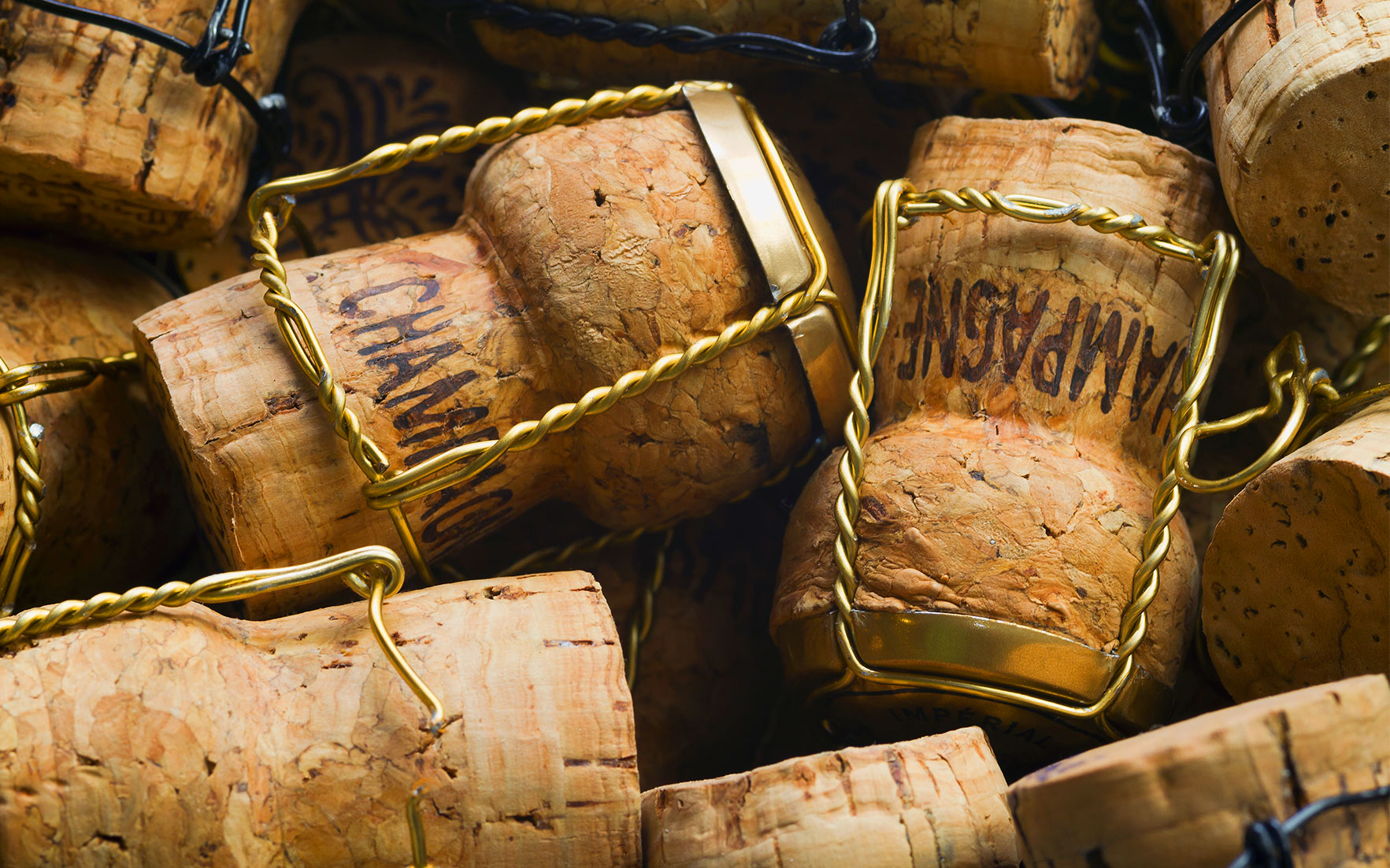 An expert guide to Champagne