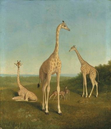 Jacques-Laurent Agasse (Geneva 1767-1849 London), Giraffes with Impala in a Landscape. Oil on millboard. Estimate £40,000-60,000. Sold for £254,500 in the Old Master & British Paintings Day Sale on 8 July 2016