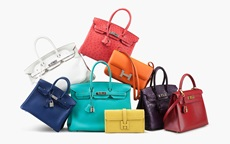 Collecting Guide: Hermès