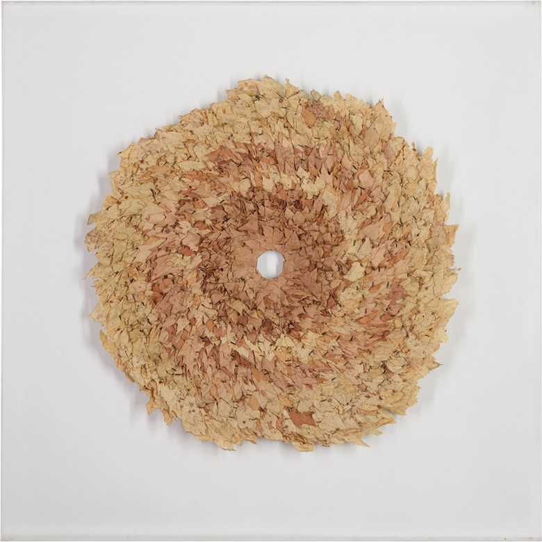 Andy Goldsworthy (b.  1956), Leaf Work, Conceived in 1991. Red oak leaves in a perspex box frame, 43 x 43 in (109.2 x 109.2 cm), including perspex box frame. Estimate £4,000-6,000. This lot is offered in ModernBritish Art Online, 2-13 December 2016