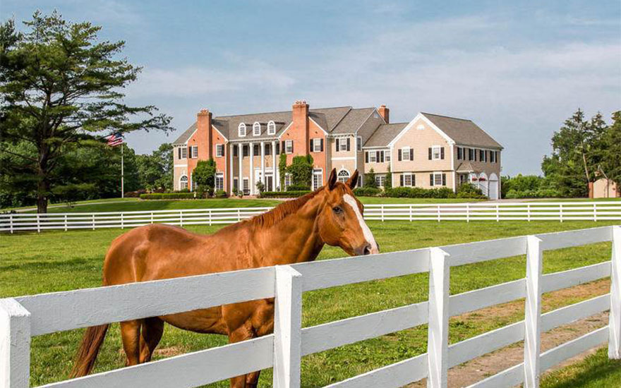 Luxury Living: Homes for horse