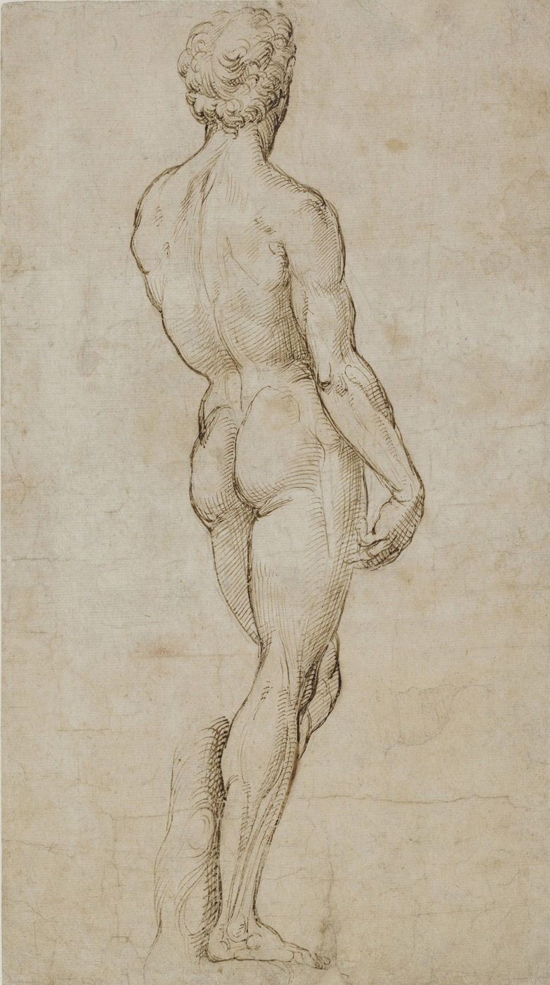 Study Inspired by Michelangelo's David, c. 1504-5. Pen and brown ink over traces of black chalk. 39.6 x 21.9 cm. © Trustees of the British Museum