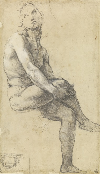 Study for Adam in the Disputa, c. 1508-10. Chalk andor charcoal with white heightening. 35.7 x 21.2 cm. © Gallerie degli Uffizi, Gabinetto dei Disegni e delle Stampe, Florence