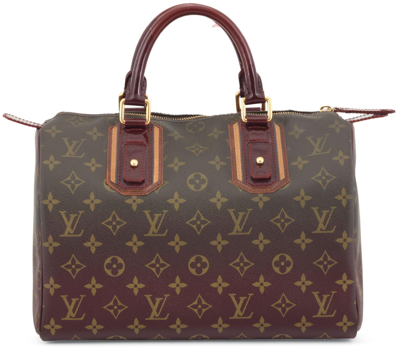 new louis vuitton bags 2009