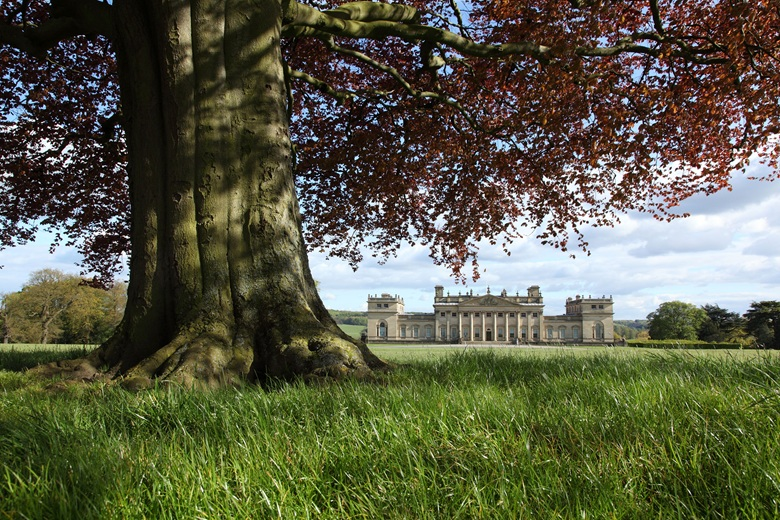 Harewood House in Yorkshire © Harewood House Trust. Photograph by Simon Warner
