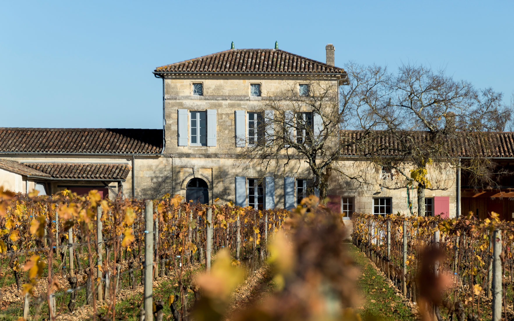 Château Lafleur, which produces only 1,000 cases per vintage from its 4.5-hectare vineyard