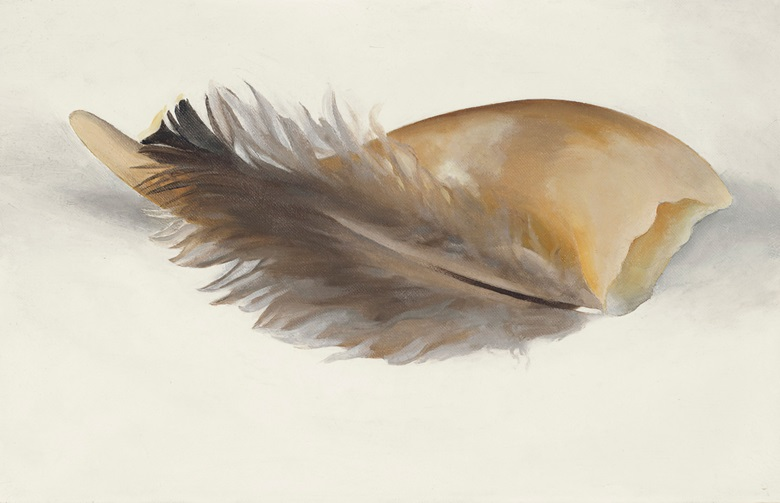 Georgia O'Keeffe (1887-1986), Horn and Feather, 1937. Oil on canvas.  9 x 14 in.  Estimate $700,000-1,000,000. Offered in An American Place The Barney A. Ebsworth Collection Evening Sale on 13 November 2018 at Christie's in New York