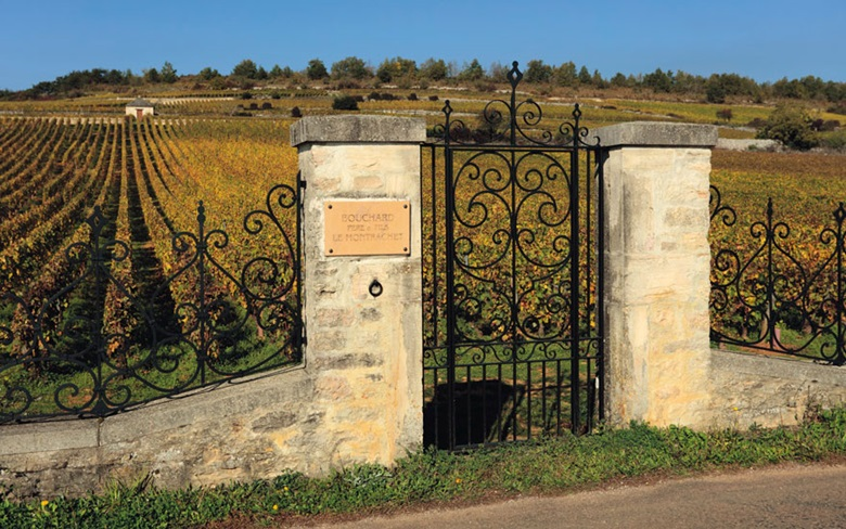 Founded in 1731, Bouchard Père et Fils is one of the oldest wine estates in Burgundy