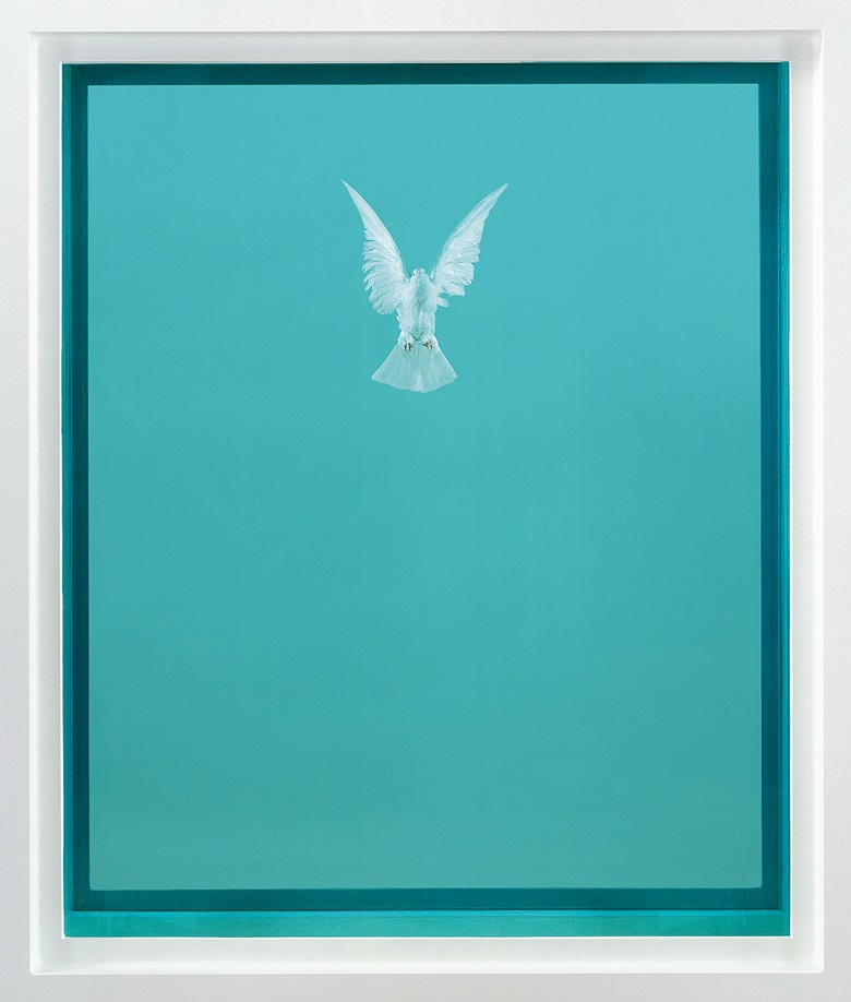 Damien Hirst, The Incomplete Truth, 2006. Glass, painted aluminium, silicone, acrylic, stainless steel, dove and formaldehyde solution. 87 x 69 x 29⅛ in (222 x 176 x 74 cm). This work is from an edition of three, plus one artist's proof plus one HC. Offered in The George Michael Collection on 14 March at Christie's London. Photographed by Prudence Cuming Associates. © Damien Hirst