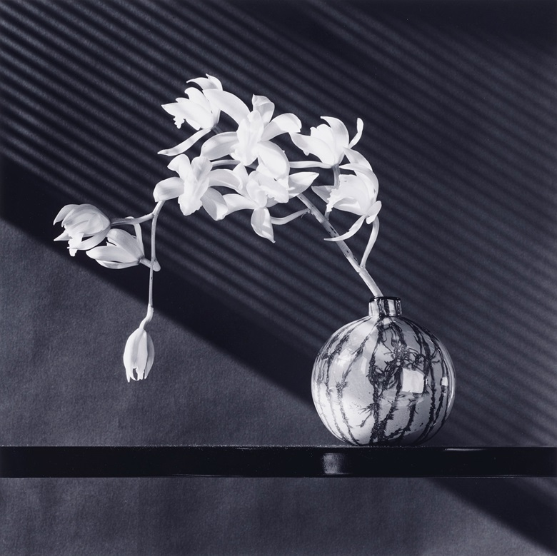 Robert Mapplethorpe (1946-1989), Orchids, 1987. Sheetflush mount 23⅞ x 20 in (60.5 x 50.8 cm). Estimate $18,000-25,000. Offered in Photographs on 2 April 2019 at Christie's in New York