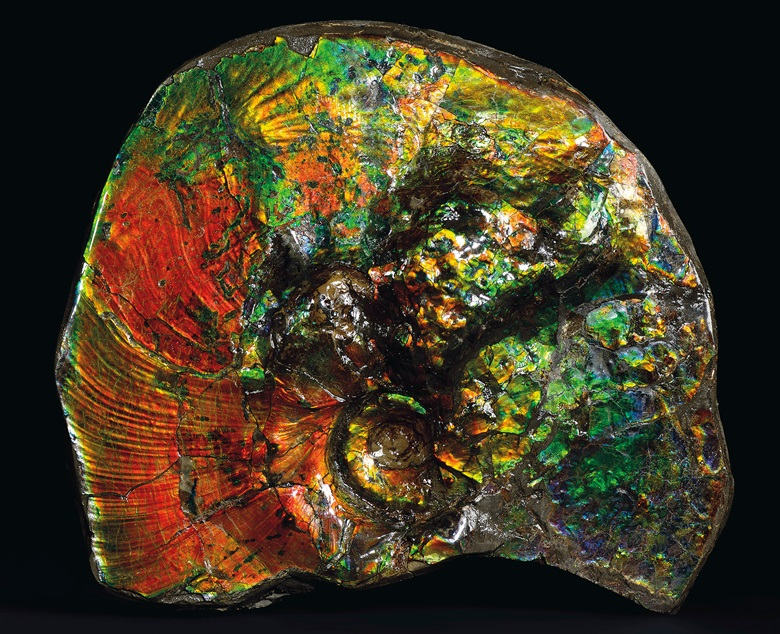A fine specimen of ammolite, Canada. 9½ x 8¾ x 3 in (24.1 x 22.3 x 7.6 cm). Estimate GBP £2,000-3,000. Offered in Sculpted by Nature Fossils, Minerals and Meteorites, 4-21 May 2020, Online