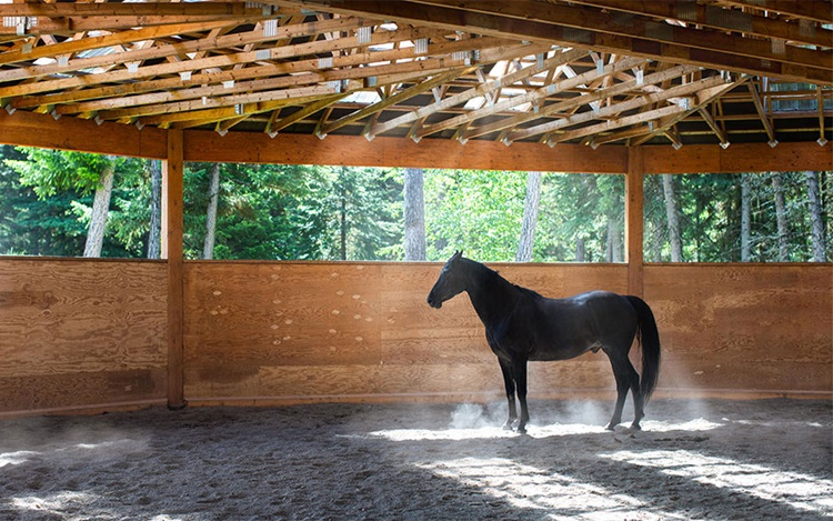 Luxury homes: horse ranches an auction at Christies