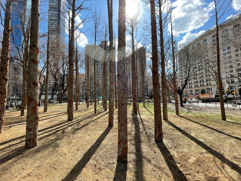 Ghost Forest, 2021. Maya Lin (American, b. 1959). Courtesy Maya Lin and Madison Square Park Conservancy. Photograph by Maya Lin Studio