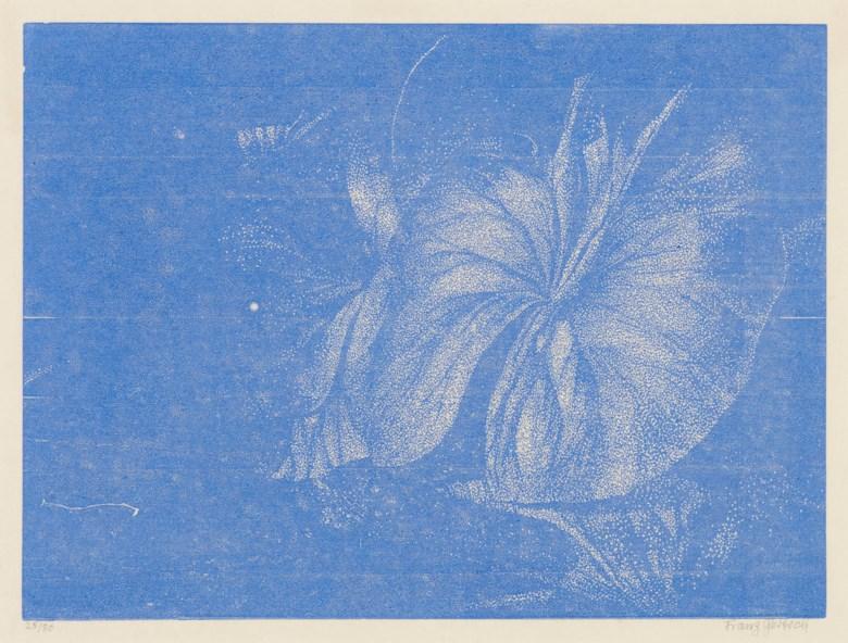 Franz Gertsch (b. 1930), Teichrosenblatt. Sheet 16⅞ x 21¼ in (43 x 54 cm). Sold for £3,250 on 26 July 2018, online